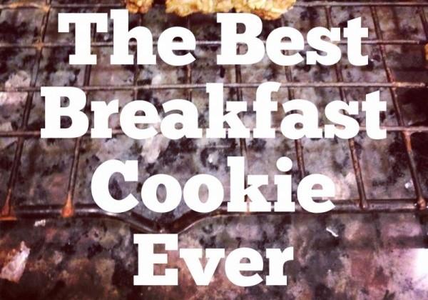 The Best Breakfast Cookies Ever